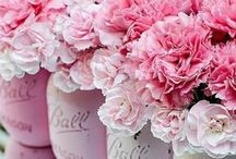 Pretty in Pink / by Racked