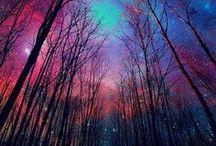 Beautiful / by Darsie Bruno