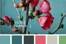 Decorating Ideas / by Abigail Patricia