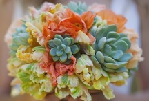 Fab Floral / by Abigail Patricia