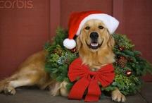 Christmas / by K.E. Hickman