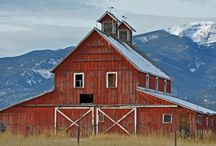 Barns and Buildings I Love / by Loves by Jay Michele Dodds