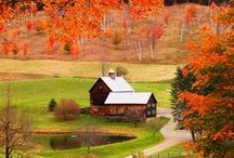 Autumn in Cottage Country / There is no better place to view the spectacular autumn colours and changing of the leaves than in cottage country!  / by CanadaStays
