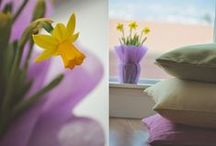 Colorful Home / Throw pillows, beautiful artwork and fresh flowers are all great ways to add some color! / by Pillow Decor