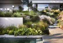 Garden Ideas and Hardscapes / If you like this board, check out my Chlorophyll board for some of my favorite plants.  / by Zephyr Landscape Design, LLC