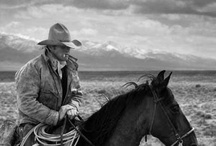 Western....and a lil bit more. / by Donna Haase Brendle
