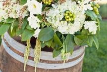 Winery Weddings / by Lauren Hainsworth