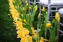 Yellow Wedding Inspiration / by Lauren Hainsworth