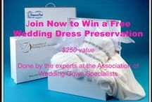 Wedding Dress Preservation / Archival storage of wedding gowns, lingerie, shoes, purse, ring pillow, cards and so much more! / by Foster-Stephens, Inc.