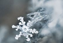 Chill(y!) / Snow, ice and all things winter / by Deyel Fallows