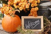 Fall & Halloween  / by Ashley Acree-Morris