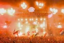 Festival aftermovies / by Festcollect