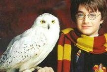 Harry Potter / by Lavanya Ahuja