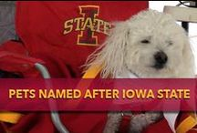 Pets Named after Iowa State / by Iowa State Athletics