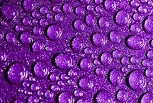 Purple Rain (group) / New group. All shades of purple, lilac, lavender, violet, pinky purple, bluish purple. Pin purple dresses, purple hair, purple outfits, purple mountains, purple skies, purple rooms, purple furniture, purple grapes, etc. We love purple. Add friends. Report spam.  / by Brittany California