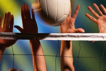 Volleyball / by Academy Sports + Outdoors