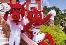Arkansas Razorback Fan Central  / by Academy Sports + Outdoors