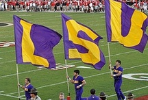 LSU Tigers Fan Central / by Academy Sports + Outdoors