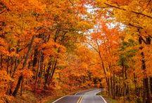 Favorite Season.. Fall  / by Bryanna Straugh