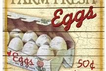 Egg/cellant / by Deborah Robbins