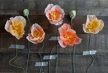 Crafts/DIY / by Elizabeth