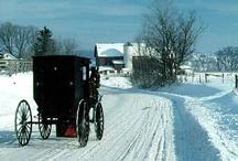 Amish / by Maria Manes Mattera
