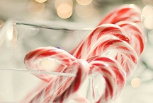 Holidays / by Dr. Ava Shamban