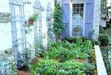 Garden / by Ashley Utile