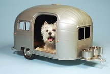 """Woof Worthy"" A dog's dream wishlist / by Animal Practice NBC"