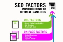 Search and SEO / by Paramount Communication