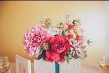 Wedding Ideas / by Shannyn of Frugal Beautiful