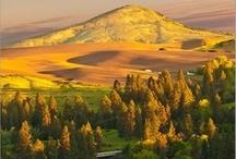 All Things Idaho! / by Carole Wilson