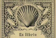 Bookplates / by Carter Pinnix