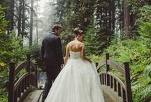 Dream Wedding <3 / by Lauren Rachelle
