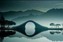 Bridge / by Whitney