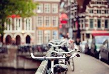 Amsterdam! I WILL LIVE HERE! / by Denis Marsili - Conceptual Art and T-Shirts