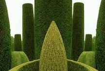 No1: GARDEN FEATURES AND DETAILS (see new pins on board No 2) / by G G