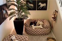Pets Paradise ♥ / Lovely and Amazing things for our Pets :) / by Jollie K