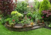 Gardening ✿ Landscaping / #Garden #Landscaping / by Jollie K