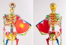 Mr. Bones / by Kiehl's