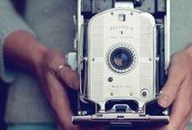 Paparazzi / by Samantha Kestler