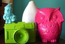 Craft/DIY / by Colee Palumbo