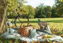 Picnic | Garden Party / by House of Fraser