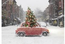 i love christmas  / by Suzi
