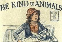 love / animals! / by Katharine Giles