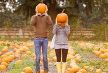 Fall Festivities  / by Andrea King