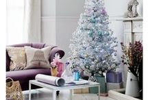 Holidays / Tis the Season! 