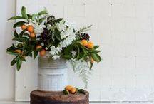 Flowers / Plants, blooms and bouquets / by Cristina Moret Plumé