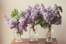 Flower Power / by Eliza Morawska {white plate}