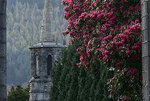 View ... from inside / lovely  .. / by Etta Stewart King